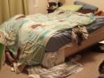 Master Ten's interpretation of making his bed...