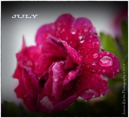 07 - JULY