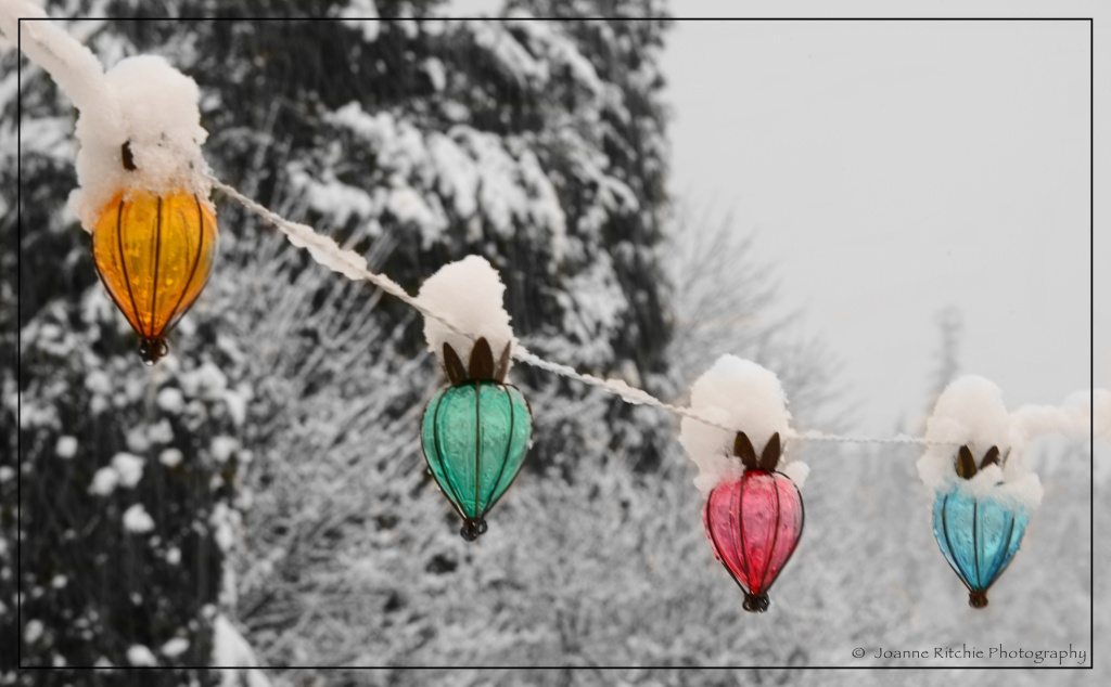 Color of Winter
