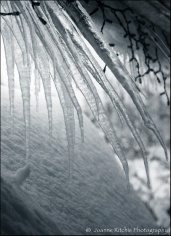 Crazy Icicles pushed under the eves
