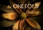 the ONE FOUR Challenge - Week 1