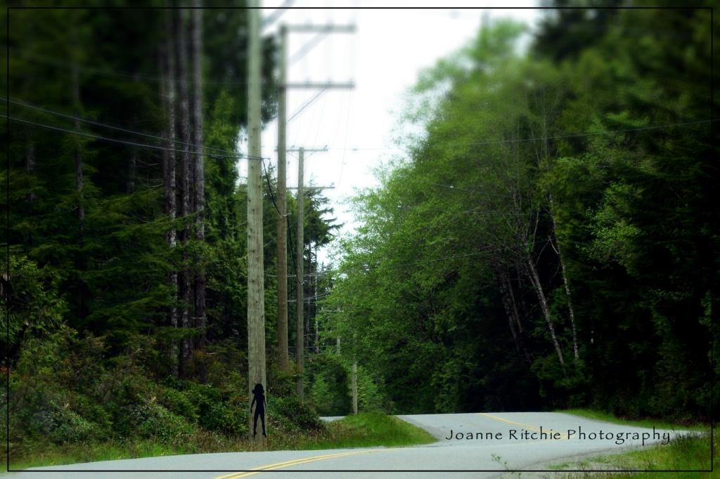 Telephone Pole Art... interesting!