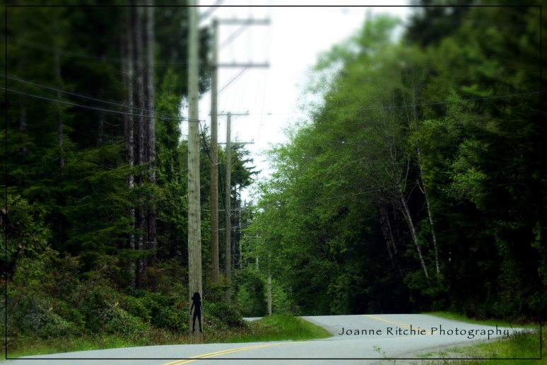 Telephone Pole Art... interesting!