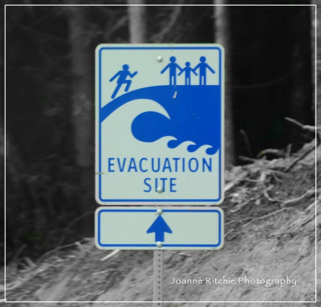 To Evacuation Tsunami Site
