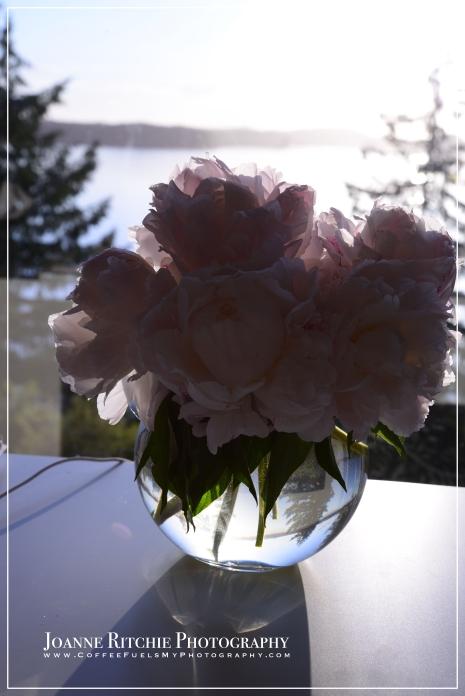 Vase of Yesteryear - Original
