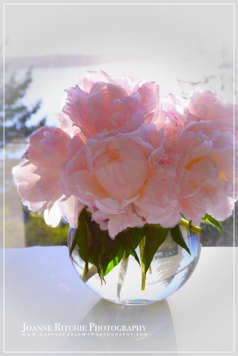 Vase of Yesteryear - Week 1