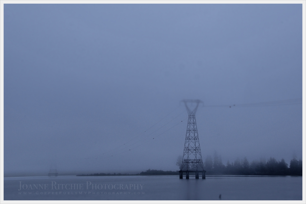 transforming-fog