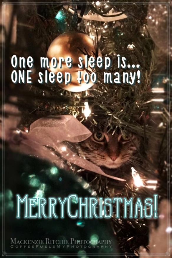 one-more-sleep