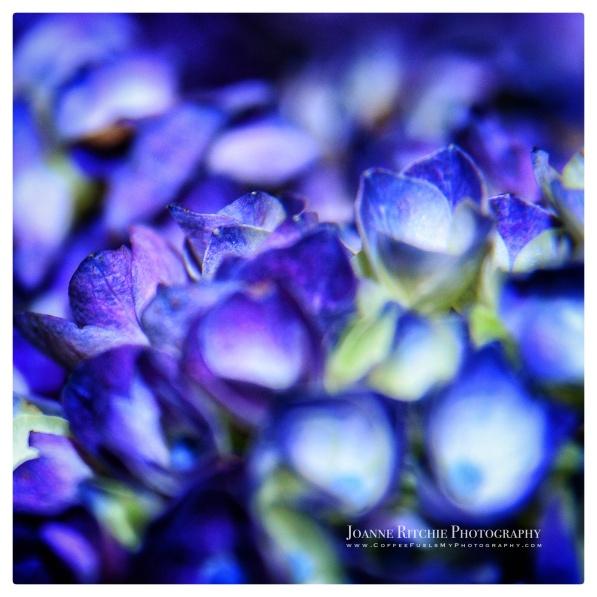 blurry-blues