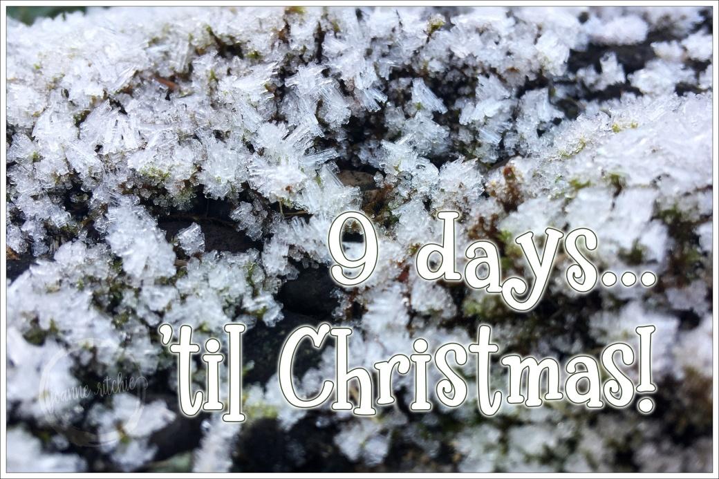 Jack Frost - 9 Days