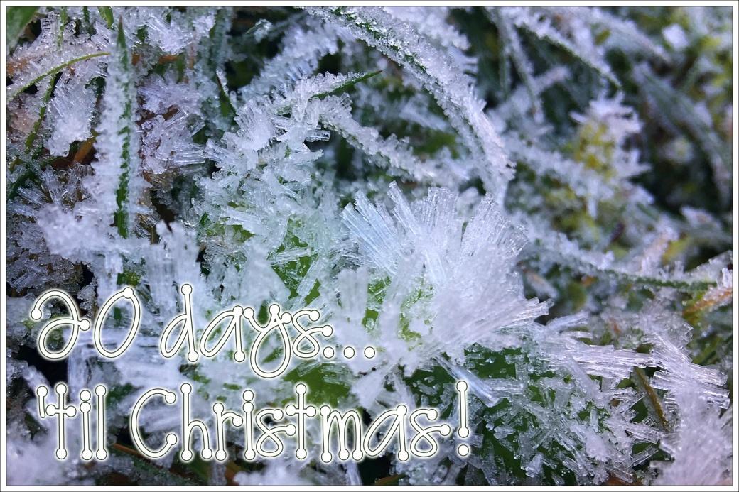 Christmas Countdown 20